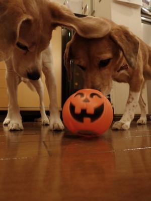 Meg_halloween1