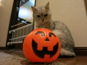 Meg_halloween2